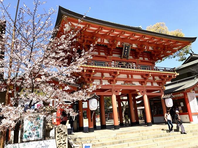 【生田神社】神戸で一番の縁結びパワースポット神社!見どころはここ!