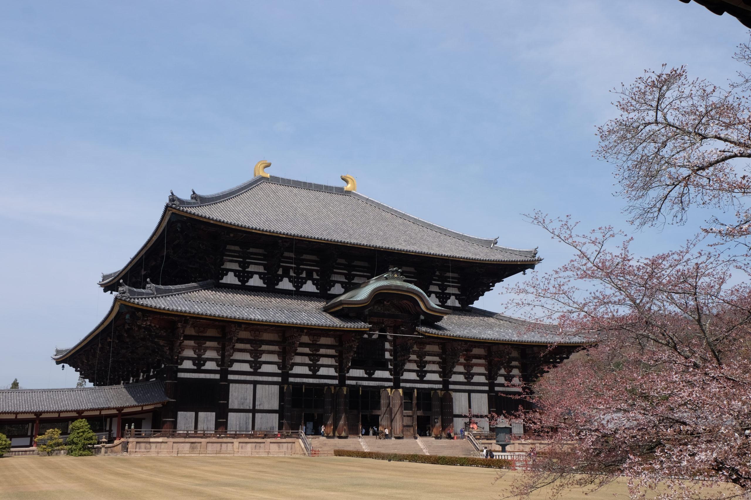 【東大寺】奈良の大仏を参拝!歴史や見どころまで完全網羅!