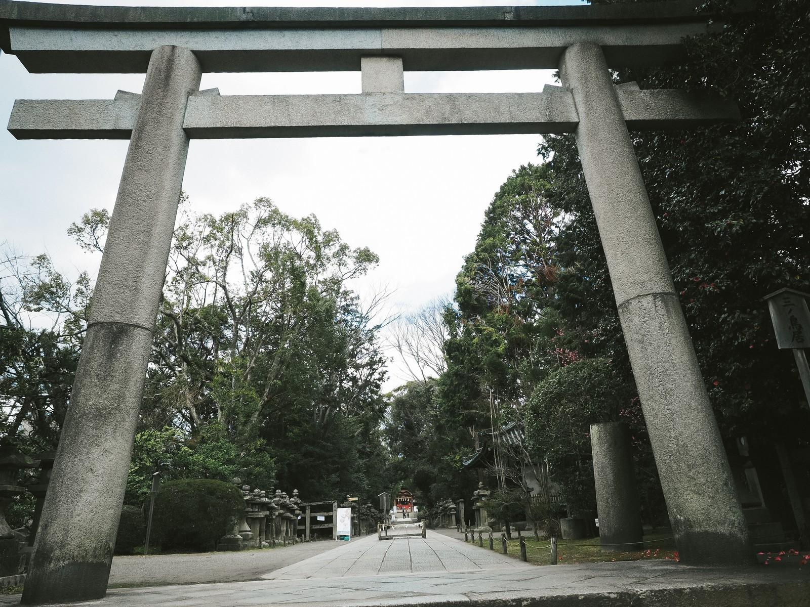 与麻令児コラムNo.14『お礼のお詣りについて!』