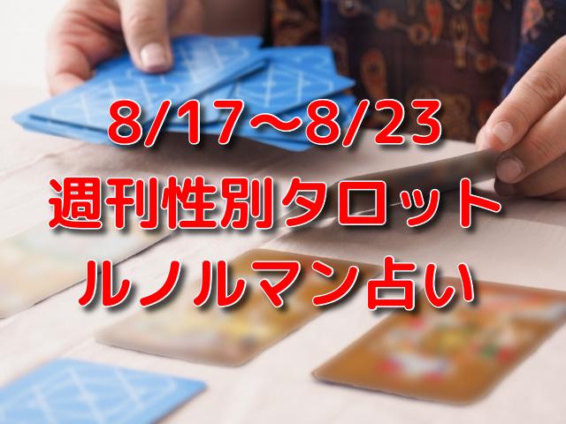 8/17~8/23 週刊性別タロット・ルノルマン占い