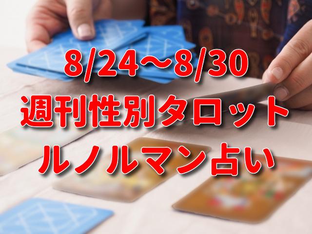 8/24~8/30 週刊性別タロット・ルノルマン占い