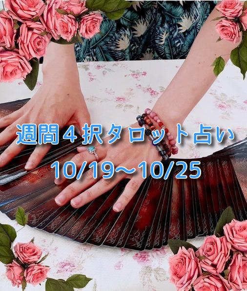 週間4択タロット占い【10月19日(月)~10月25日(日)】