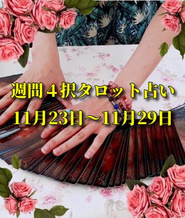 週間4択タロット占い【11月23日(月)~11月29日(日)】