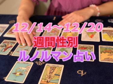 12/14~12/20 週間性別ルノルマン占い